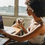 imagen chica buscando en internet mientras acaricia a un perro